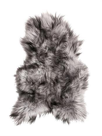 Alvorlig Islandsk lammeskind i Farver silver mørke toppe langhåret EE45